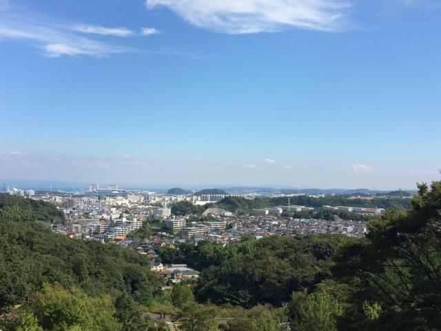 動物園からの眺め。高台にあるので、景色がいいです!小さく八景島シーパラダイスも見えます。