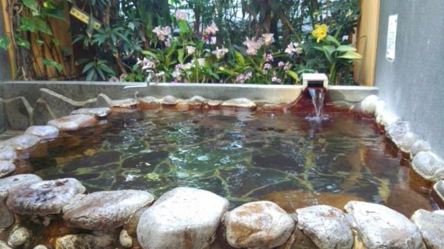 陽だまり温泉 花の湯