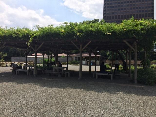 藤棚の下は、日陰になっており、テーブルもあるので、休憩やお弁当にぴったり!