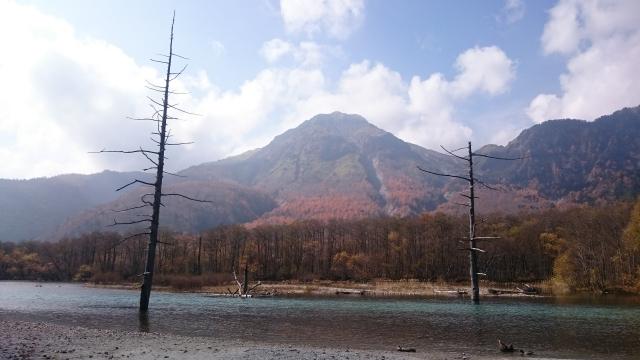 大正池と焼岳です。