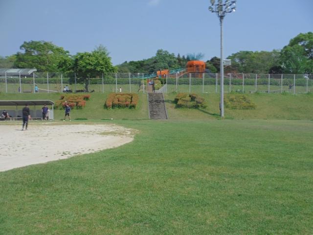 高岡公園で示している植木
