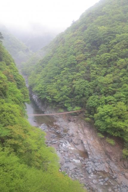 ケーブルから祖谷渓の眺め
