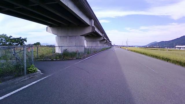 左側の側道にレーダー設置