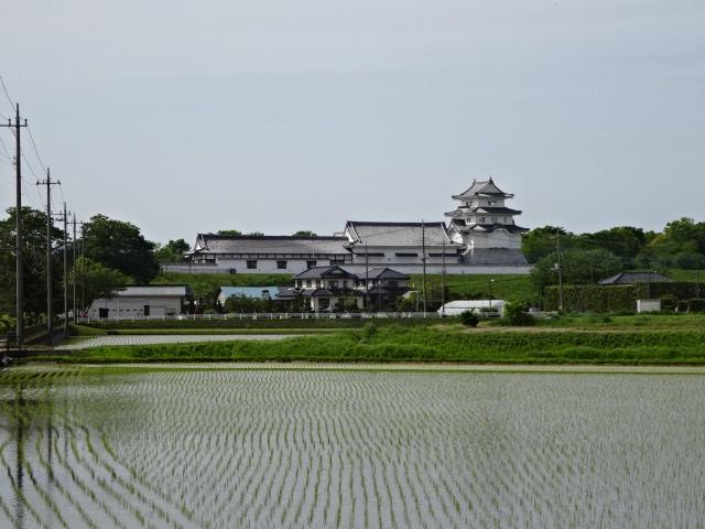 千葉県立 関宿城博物館